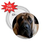 English Mastiff 2.25  Button (100 pack)