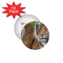 Soft Protection 1.75  Button (10 pack)