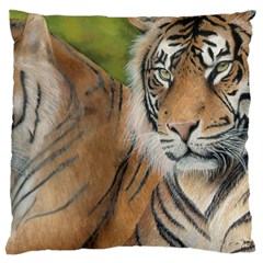Soft Protection Large Cushion Case (two Sided)  by TonyaButcher