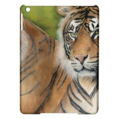 Soft Protection Apple Ipad Air Hardshell Case by TonyaButcher