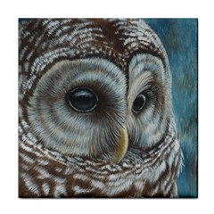 Barred Owl Ceramic Tile by TonyaButcher