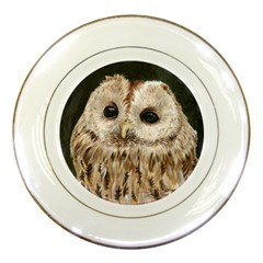 Tawny Owl Porcelain Display Plate by TonyaButcher