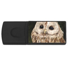 Tawny Owl 4gb Usb Flash Drive (rectangle) by TonyaButcher