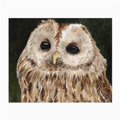 Tawny Owl Glasses Cloth (small, Two Sided) by TonyaButcher