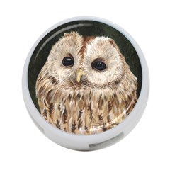 Tawny Owl 4 Port Usb Hub (two Sides) by TonyaButcher