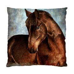 Midnight Jewel  Cushion Case (single Sided)  by TonyaButcher