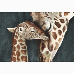 A Mother s Love Canvas 20  X 30  (unframed) by TonyaButcher