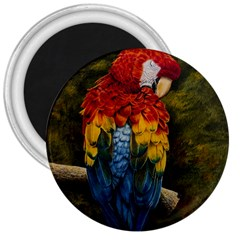 Preening 3  Button Magnet by TonyaButcher