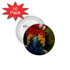 Preening 1.75  Button (10 pack)
