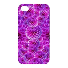Purple Dahlias Apple Iphone 4/4s Hardshell Case by FunWithFibro