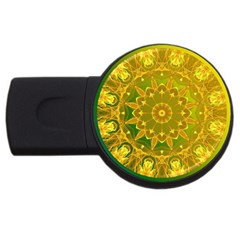Yellow Green Abstract Wheel Of Fire 2gb Usb Flash Drive (round)