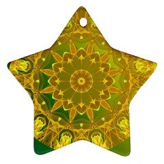 Yellow Green Abstract Wheel Of Fire Star Ornament (two Sides) by DianeClancy
