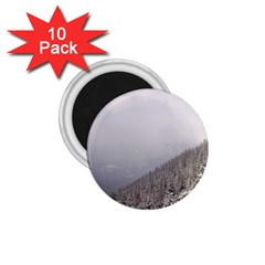 Banff 1 75  Button Magnet (10 Pack) by DmitrysTravels