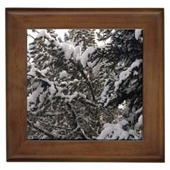 Snowy Trees Framed Ceramic Tile by DmitrysTravels