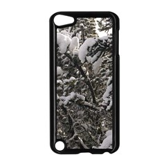 Snowy Trees Apple Ipod Touch 5 Case (black) by DmitrysTravels