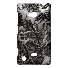 Snowy Trees Nokia Lumia 720 Hardshell Case