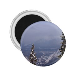 Trees 2 25  Button Magnet by DmitrysTravels