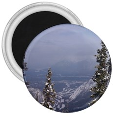 Trees 3  Button Magnet by DmitrysTravels
