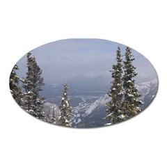 Trees Magnet (oval) by DmitrysTravels