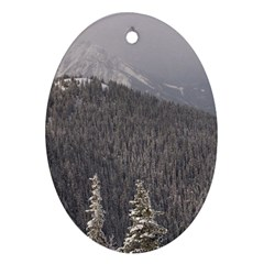 Mountains Oval Ornament (two Sides) by DmitrysTravels