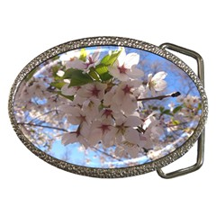 Sakura Belt Buckle (oval) by DmitrysTravels