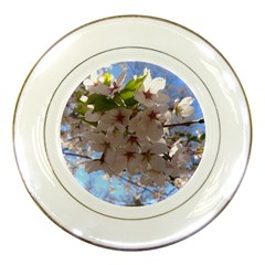 Sakura Porcelain Display Plate by DmitrysTravels