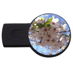 Sakura 4gb Usb Flash Drive (round) by DmitrysTravels