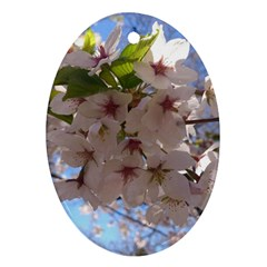 Sakura Oval Ornament (two Sides) by DmitrysTravels