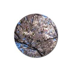 Sakura Tree Magnet 3  (round)