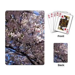 Sakura Tree Playing Cards Single Design by DmitrysTravels