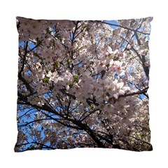 Sakura Tree Cushion Case (single Sided)  by DmitrysTravels