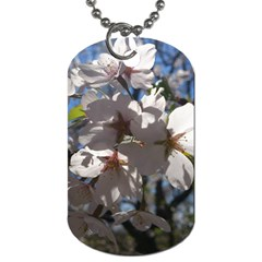 Cherry Blossoms Dog Tag (two Sided)  by DmitrysTravels