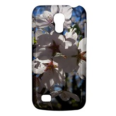 Cherry Blossoms Samsung Galaxy S4 Mini (gt I9190) Hardshell Case  by DmitrysTravels