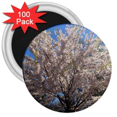 Cherry Blossoms Tree 3  Button Magnet (100 Pack) by DmitrysTravels