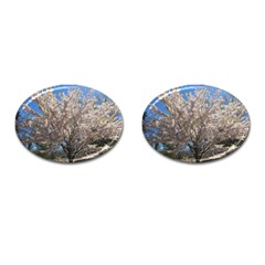 Cherry Blossoms Tree Cufflinks (oval) by DmitrysTravels