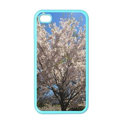 Cherry Blossoms Tree Apple Iphone 4 Case (color) by DmitrysTravels