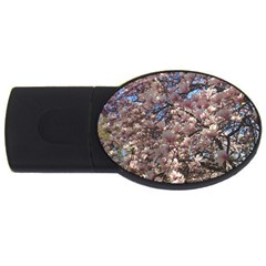 Sakura 2gb Usb Flash Drive (oval) by DmitrysTravels