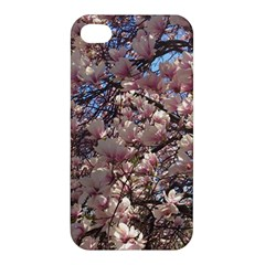 Sakura Apple Iphone 4/4s Hardshell Case by DmitrysTravels