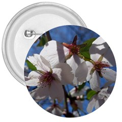 Cherry Blossoms 3  Button by DmitrysTravels