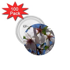 Cherry Blossoms 1 75  Button (100 Pack) by DmitrysTravels