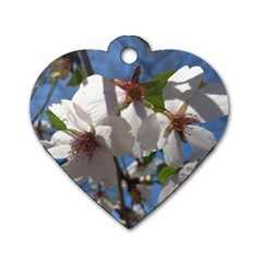 Cherry Blossoms Dog Tag Heart (one Sided)  by DmitrysTravels