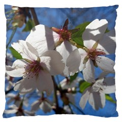 Cherry Blossoms Large Cushion Case (two Sided)  by DmitrysTravels