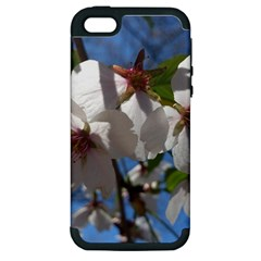 Cherry Blossoms Apple Iphone 5 Hardshell Case (pc+silicone) by DmitrysTravels