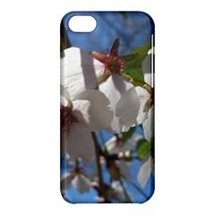 Cherry Blossoms Apple Iphone 5c Hardshell Case by DmitrysTravels