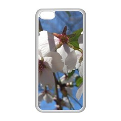 Cherry Blossoms Apple Iphone 5c Seamless Case (white) by DmitrysTravels