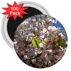 Cherry Blossoms 3  Button Magnet (100 Pack) by DmitrysTravels