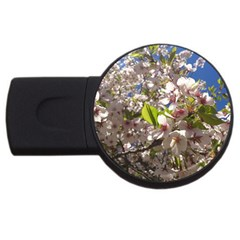 Cherry Blossoms 1GB USB Flash Drive (Round) by DmitrysTravels
