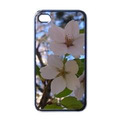 Sakura Apple Iphone 4 Case (black) by DmitrysTravels