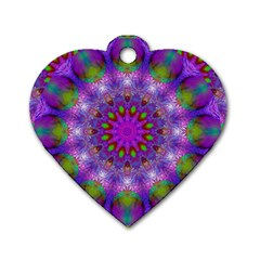 Rainbow At Dusk, Abstract Star Of Light Dog Tag Heart (one Sided)  by DianeClancy