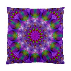 Rainbow At Dusk, Abstract Star Of Light Cushion Case (single Sided)  by DianeClancy